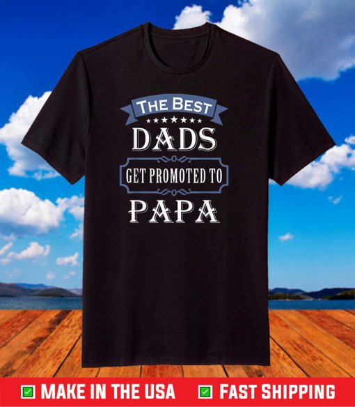 The Best Dads Get Promoted To Papa T-shirt Father's Day T-Shirt